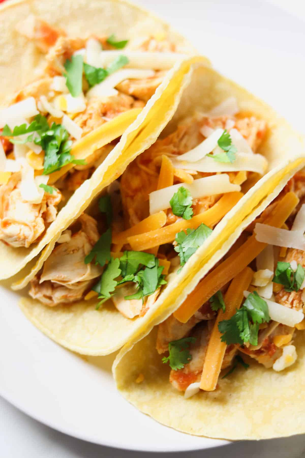 three shredded chicken tacos on white plate