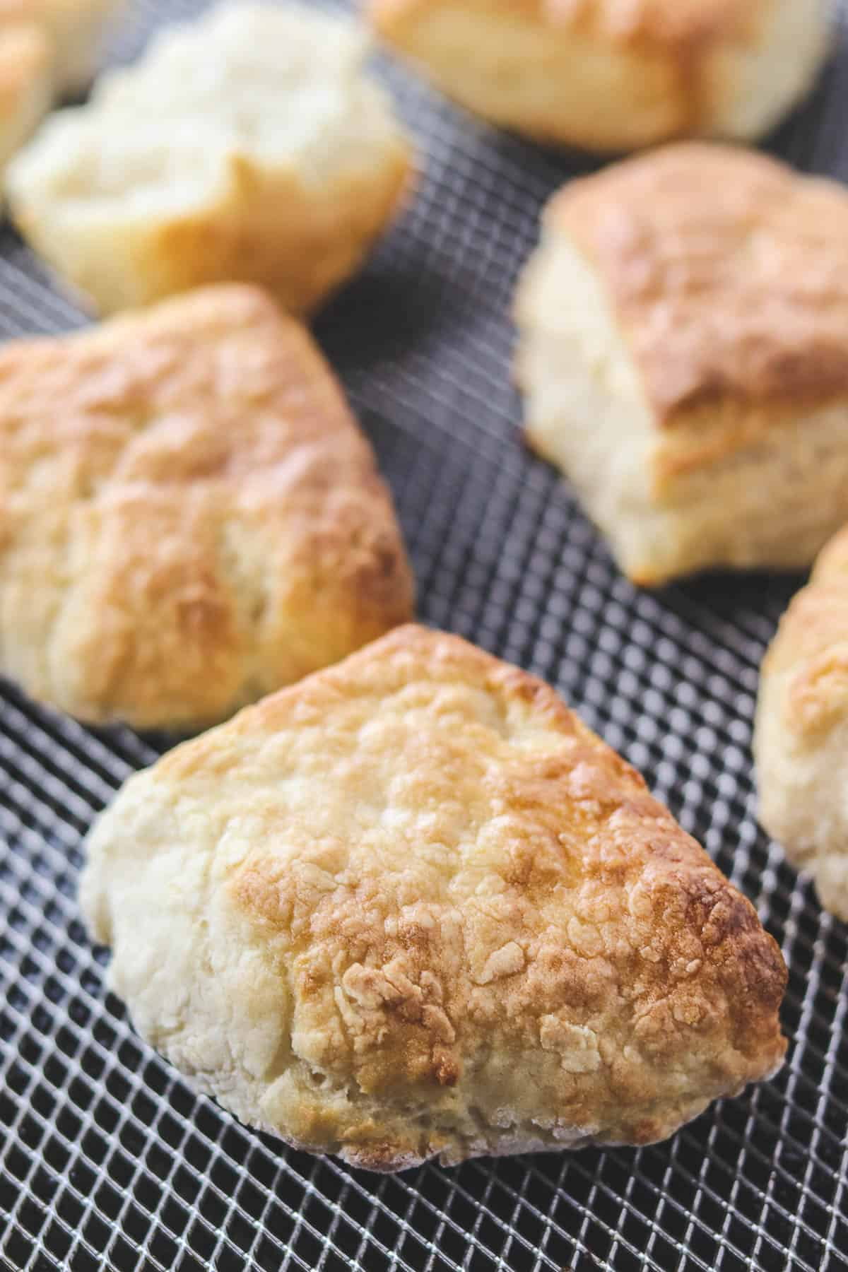 cooked biscuits in the air fryer basket